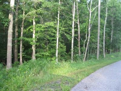Catlettsburg Residential Lots & Land For Sale: 2 NE Foxboro Estates Court