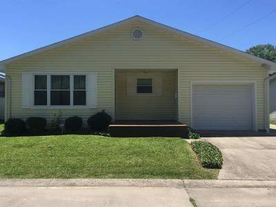 Ironton Single Family Home For Sale: 516 Patricia