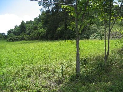 Boyd County Residential Lots & Land For Sale: 4562 Shannon Dr.