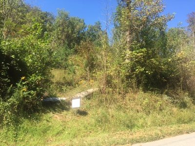 Greenup County Residential Lots & Land For Sale: 814 State Route 827