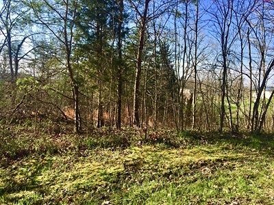 Lawrence County Residential Lots & Land For Sale: 5 Victoria Heights Rd