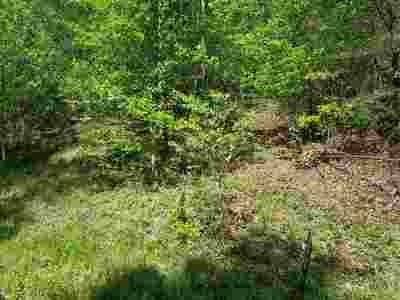 Ashland Residential Lots & Land For Sale: 38 Oakwood Circle