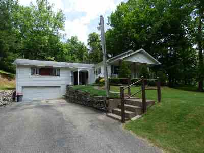 Lawrence County Single Family Home For Sale: 4919 State Route 243
