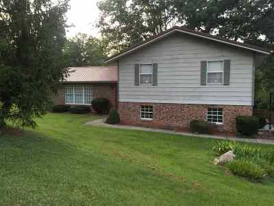 Ironton Single Family Home For Sale: 180 Private Drive 50