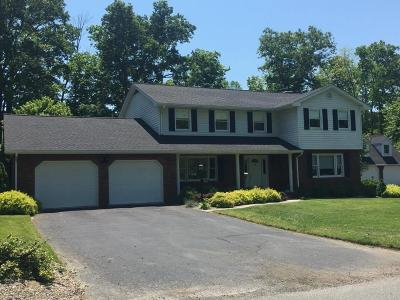 Carter County Single Family Home For Sale: 1605 Damron