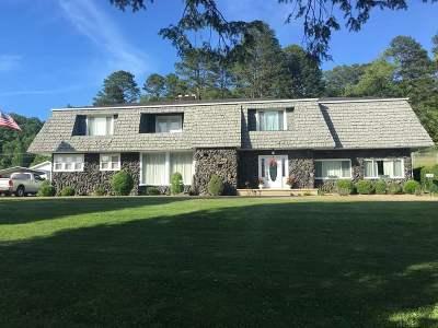 Carter County Single Family Home For Sale: 905 Kentucky 773