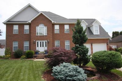 Lawrence County Single Family Home For Sale: 264 Township Road 1539 Road
