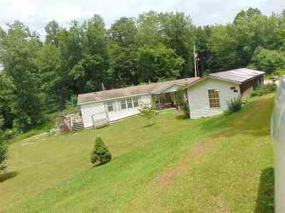Greenup Single Family Home For Sale: 1147 Wolfpen Hollow