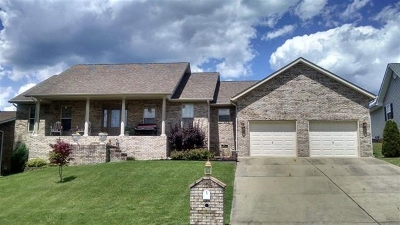 Lawrence County Single Family Home For Sale: 105 Ella