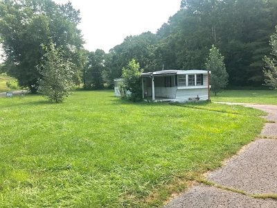 Carter County Single Family Home For Sale: 1995 Damron Branch