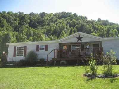 Carter County Single Family Home For Sale: 413 Church Lane