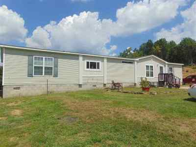Carter County Single Family Home For Sale: 517 Horseshoe Drive