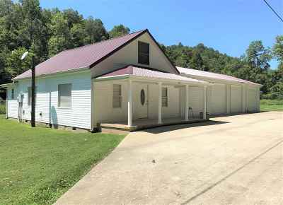 Carter County Single Family Home For Sale: 113 Lick Branch