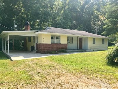 Carter County Single Family Home For Sale: 800 Huff Run Road