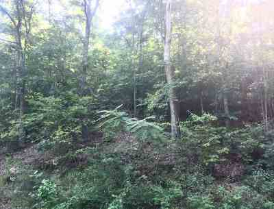 Greenup County Residential Lots & Land For Sale: Smith Branch Road