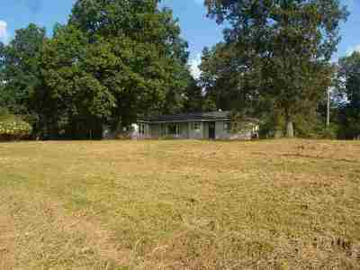Carter County Single Family Home For Sale: 2104 Blueberry Ridge