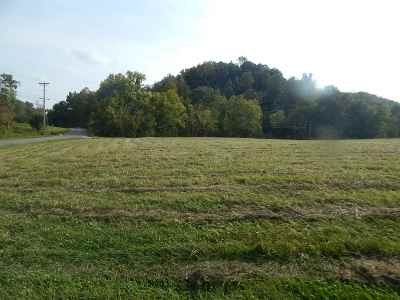 Greenup County Residential Lots & Land For Sale: Rt 503 And Tufts Rd