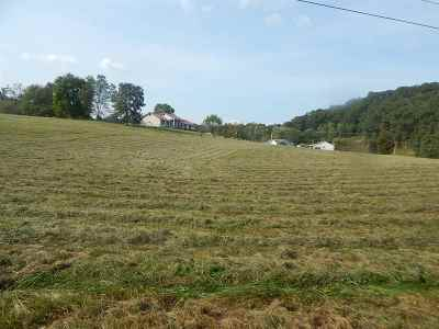 Greenup County Residential Lots & Land For Sale: Horn Hollow Off Rt 503