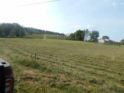 Greenup County Residential Lots & Land For Sale: Lemon Drop Lane