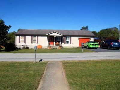 Carter County Single Family Home For Sale: 541 Jordan Court