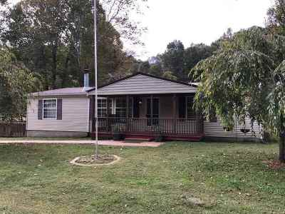 Greenup County Single Family Home For Sale: 3151 Beechy Creek Road