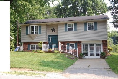 Greenup County Single Family Home For Sale: 48 Forrest Avenue