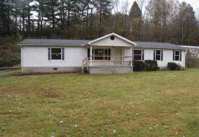 Carter County Single Family Home For Sale: 77 B And L Lane