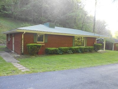 Carter County Single Family Home For Sale: 3316 Horton Flats Road