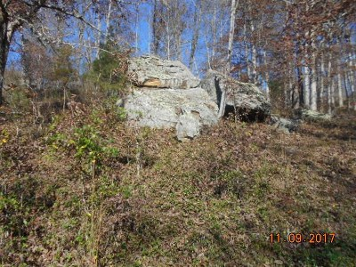 Lawrence County Residential Lots & Land For Sale: Route 1