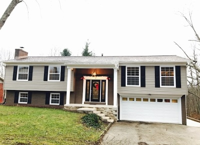 Carter County Single Family Home For Sale: 35 Woodmill Drive