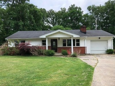 Greenup County Single Family Home For Sale: 1602 Beth Ann Drive