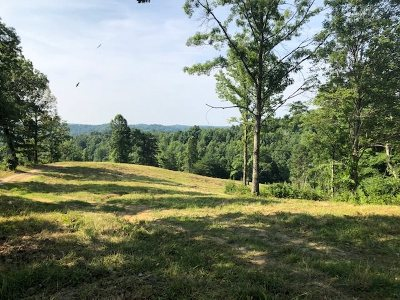 Carter County Residential Lots & Land For Sale: 1 Mills Branch