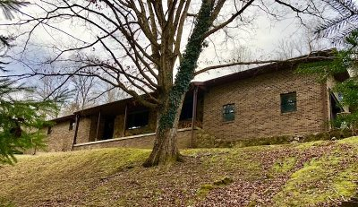 Greenup Single Family Home For Sale: 95 Cameron Lane