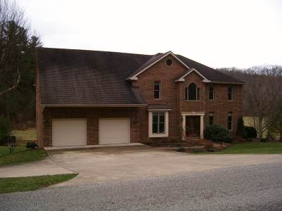 Catlettsburg Single Family Home For Sale: 3410 Cannonsburg Road