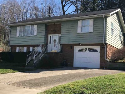Greenup County Single Family Home For Sale: 125 Thompson