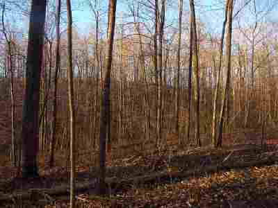 Carter County Residential Lots & Land For Sale: Bens Run