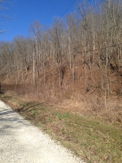 Greenup County Residential Lots & Land For Sale: 836 Buck Hollow