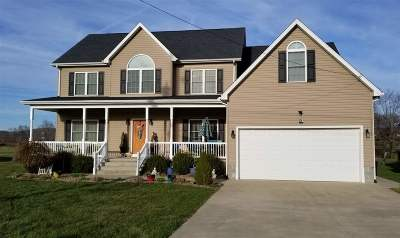 Greenup County Single Family Home For Sale: 1313 Emma Kay Boulevard