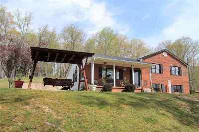 Carter County Single Family Home For Sale: 576 Kiser Br