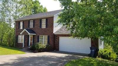 Ashland Single Family Home For Sale: 4269 Earl Street`