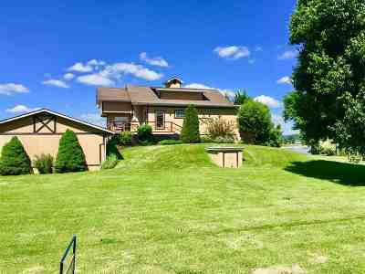 Greenup County Single Family Home For Sale: 100 Chestnut Street
