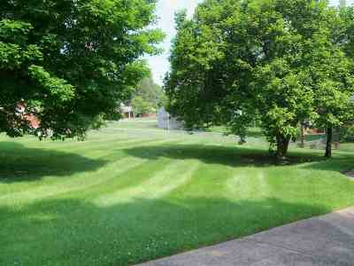 Greenup County Residential Lots & Land For Sale: 31 Belhaven Drive