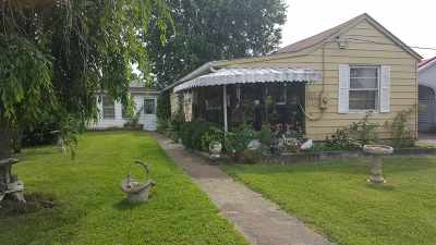 Greenup County Single Family Home For Sale: 1300 Bluegrass Street
