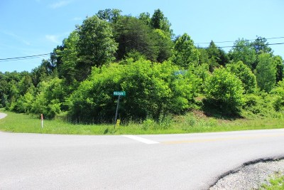 Residential Lots & Land For Sale: State Route 60 Wolohan Drive & Midland Trail