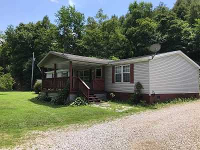 Greenup County Single Family Home For Sale: 82 Elton Hollow Road