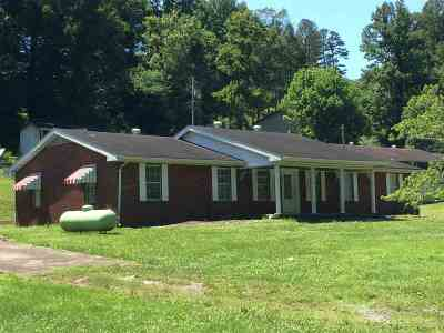 Greenup County Single Family Home For Sale: 3520 St Rt 503