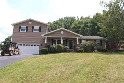 Catlettsburg Single Family Home For Sale: 4322 State Route 3