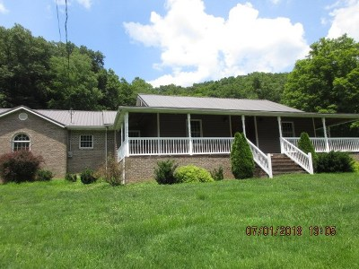 Lawrence County Single Family Home For Sale: 2066 Fallsburg Road