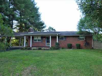 Carter County Single Family Home For Sale: 1671 E Midland Trail