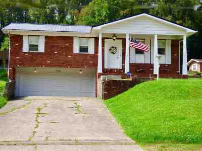 Lawrence County Single Family Home For Sale: 854 Marion Pike